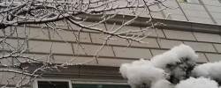 전경 - 겨울